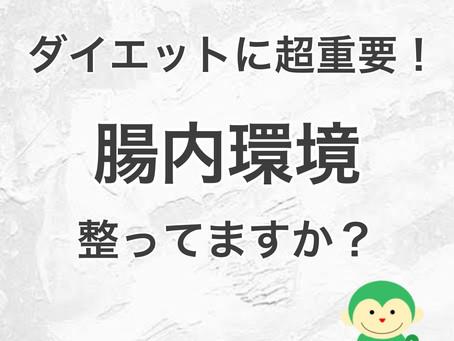 【ダイエットに超重要!】腸内環境整ってますか?/福井ダイエット情報《#かかりつけジム Lea.lu》
