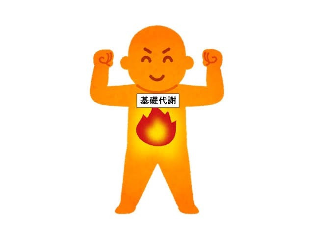 基礎代謝とオレンジの人間のイラスト