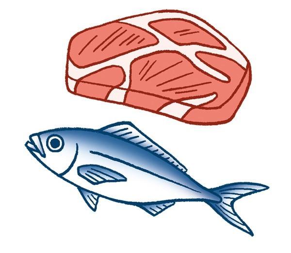 肉と魚のイラスト