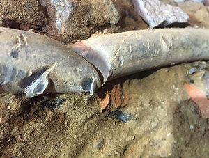 Lead Pipe.jpg