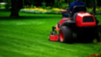 Lawn Mower Belt