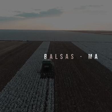 Vídeo - Ciaseeds
