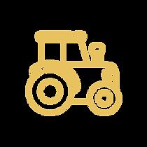 icones_novo site_dourado-02.png