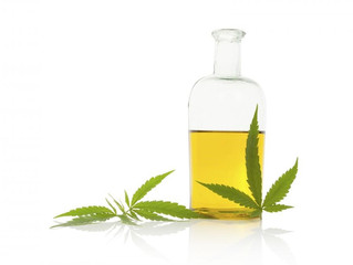 Hemp Seed Oil – Rediscovering the Miracle Seed Oil