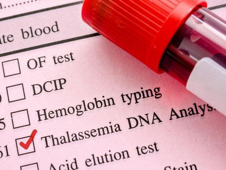 Is Stem Cell Transplant a Viable Treatment for Beta Thalassemia?
