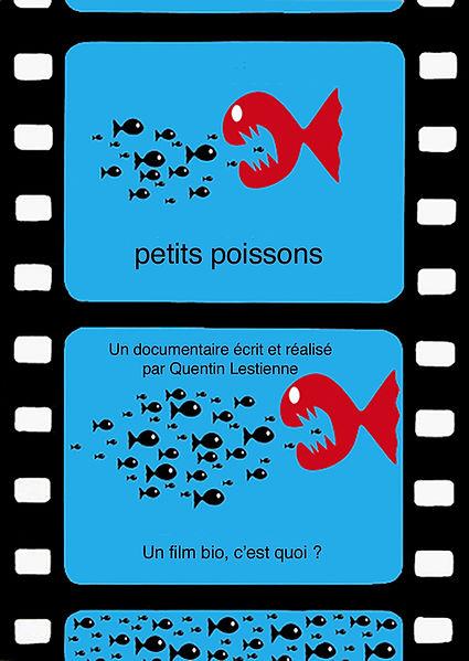 petits poissons.jpg