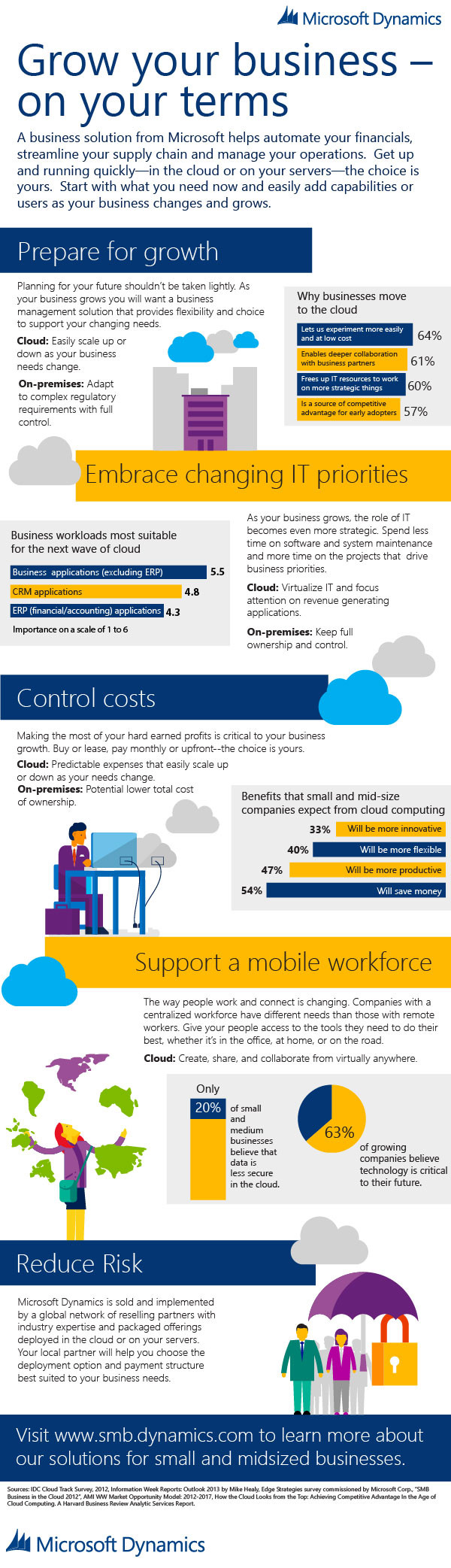 ERP-in-SMB-Infographic_Business-On-Your-Terms_Final.jpg