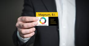 Introducing Magnum, B.I. Defender of Businesses Intelligence