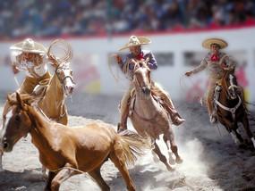 Guadalajara 7