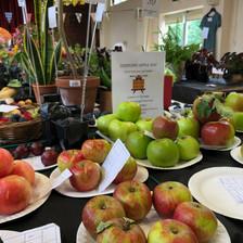 Fruit Classes