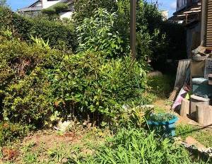 草刈りと太陽