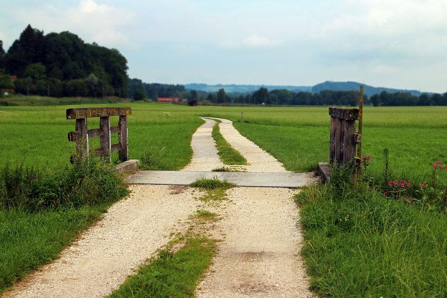 home_territorio agricolo2.jpg