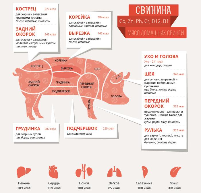 Где у свиньи находится кострец, корейка, вырезка, окорок