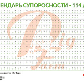 Календарь супоросности - 114 дней