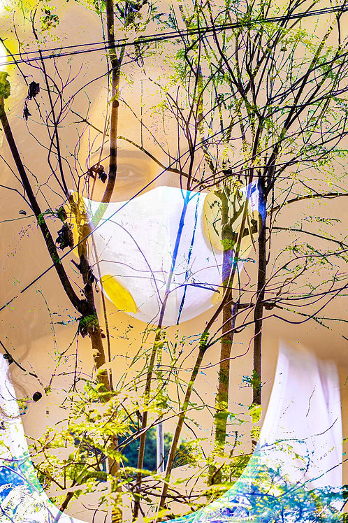 """I Still Become the Spring"" - (Original Photography Art)"