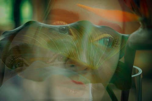 """Silence in Quarantine"" - (Original Photography Art)"