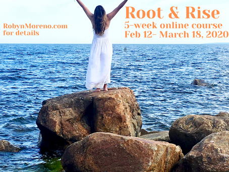 Offering two full scholarships to Root to Rise course, apply now!