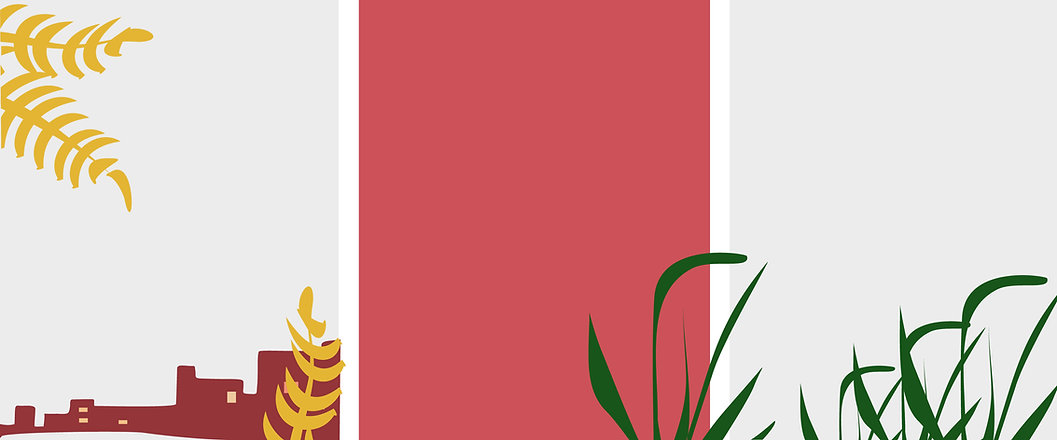 banner_colores invertidos-01 (1).jpg