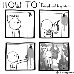 deal with spiders