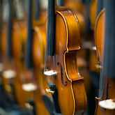 Leeds private tutor violin private violin lessons Leeds LS5