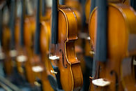 Violins Orchstral Instruments Musicans Discount Center Miami, FL