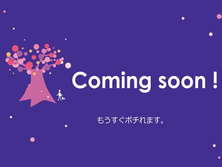 7月22日にネットショップがオープン!