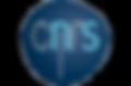 logo_cnrs1%20(1)_edited.png