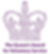 QAVS logo v01.png