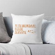 BGS Pillow.jpg
