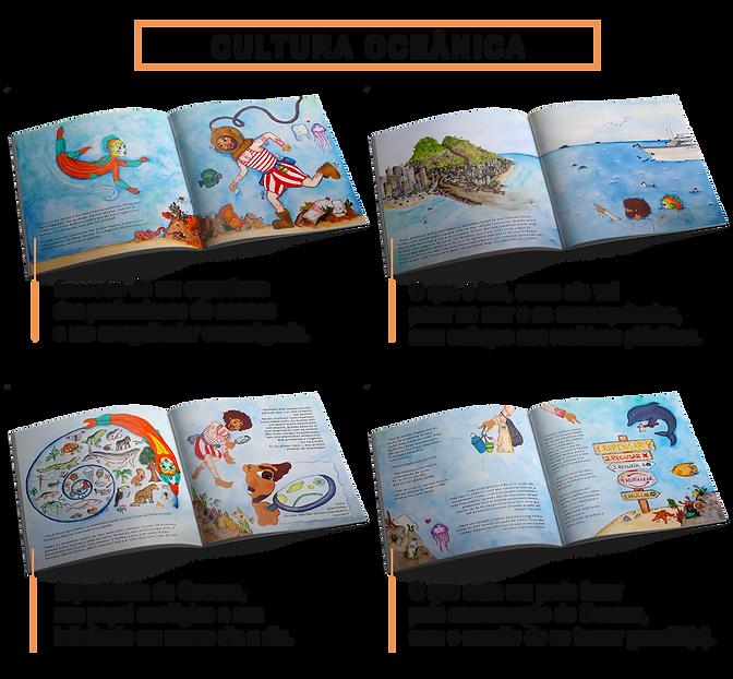 Design Conteúdo Livro com letras maiores