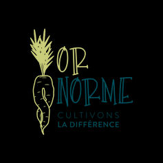 logo_OrNorme_RVB.jpg