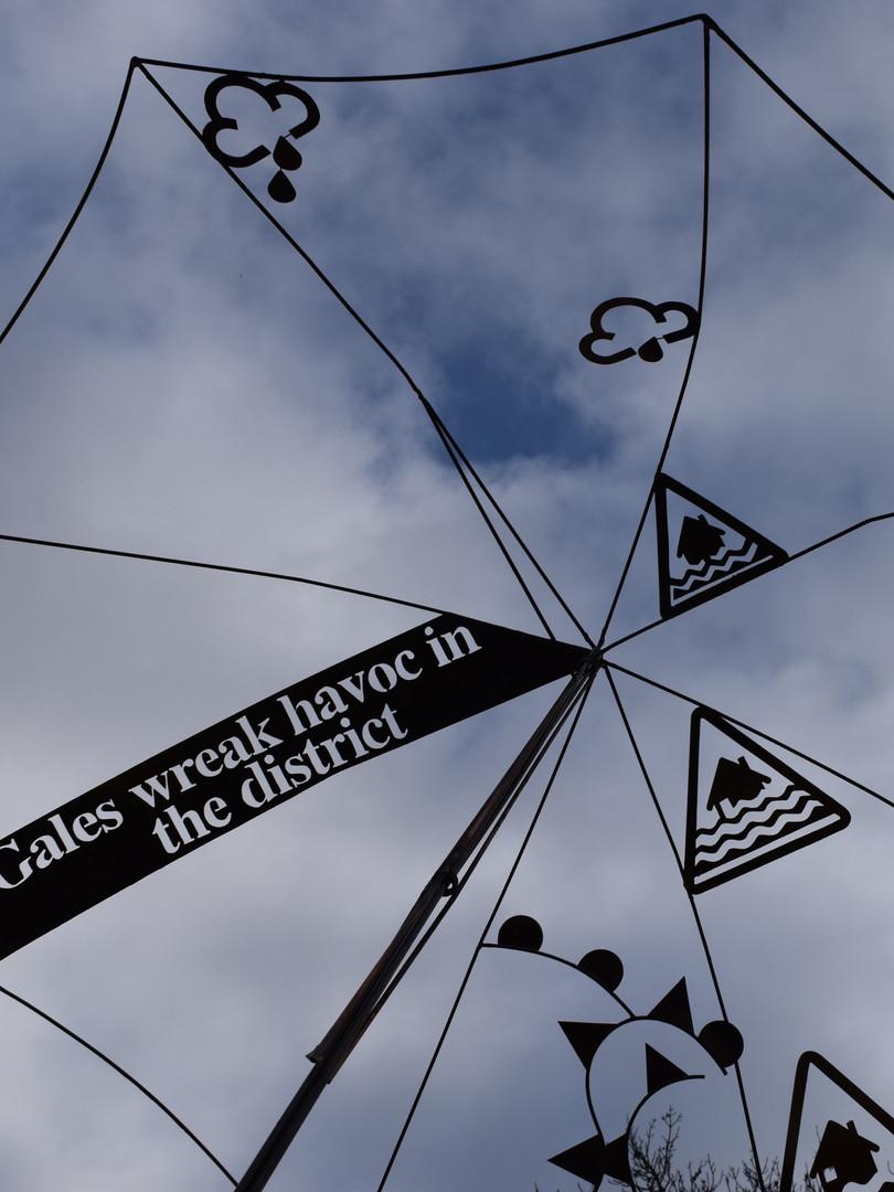 'Extreme weather' Umbrella