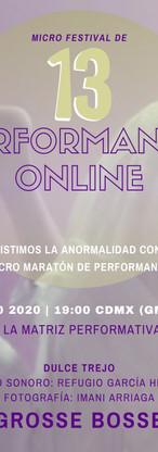 13a Edición del Micro Festival de Perfor