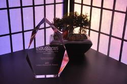 Enterprise Video Award 2015