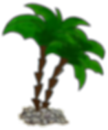 palm trees png.png