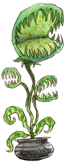 MH Plant png.png