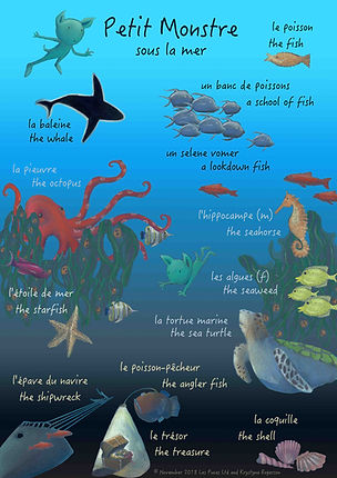 Sea Animals in French vocabulary card, under sea animals in French, French under sea vocabulary, French sea creatures. Les Puces vocabulary sheets