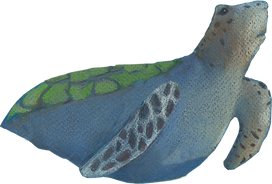 Turtle png.png