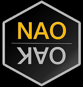 NAO Master Mirror Logo Web PNG.png