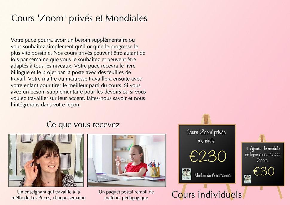 LP Zoom Private web F V6.jpg