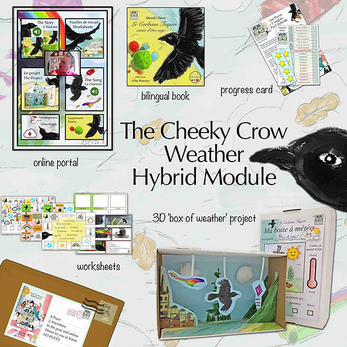 Cheeky Crow Weather - Single Hybrid module (2 Child - to learn French)