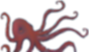 octopus png.png
