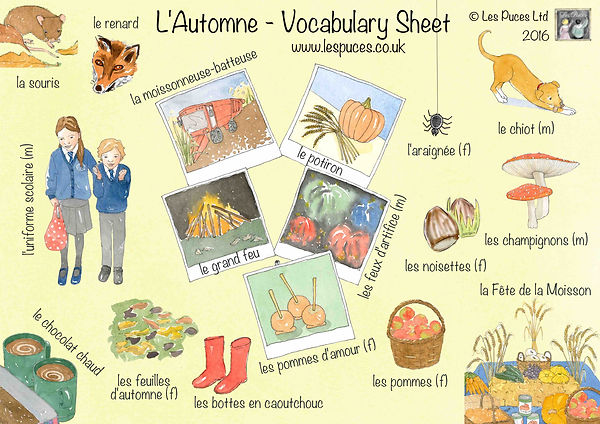 L'Automne - Autumn vocabulary sheet French English for Les Puces Ltd