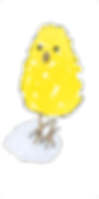 chick png.png