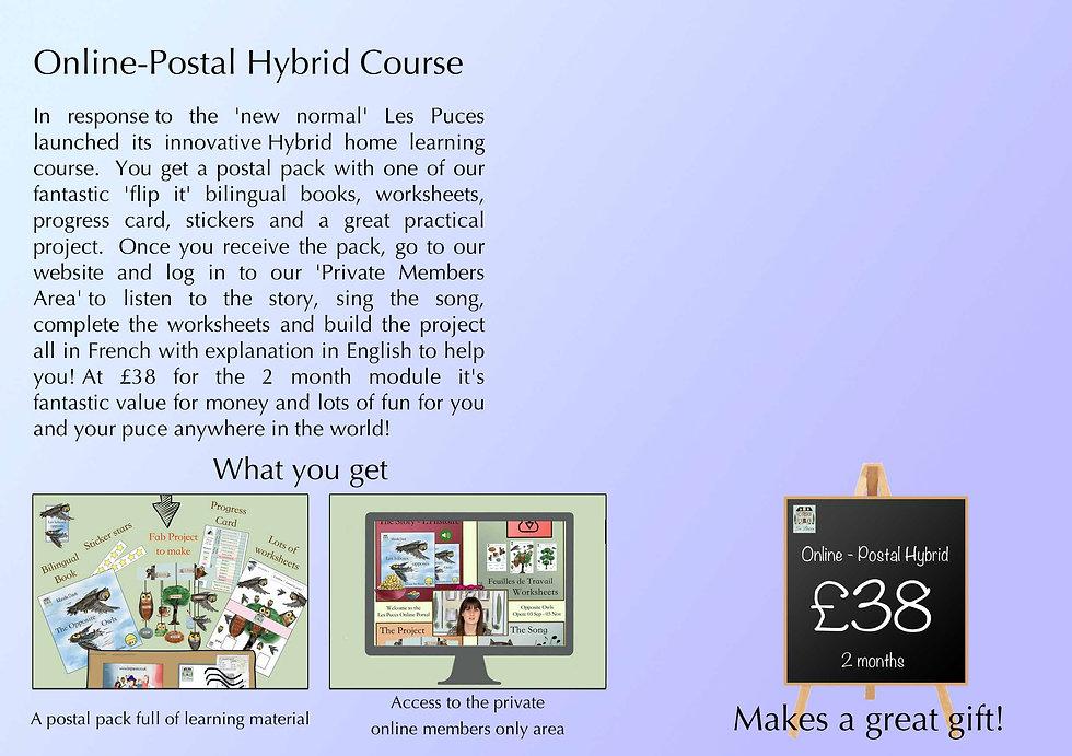 LP Hybrid web V2.jpg