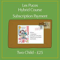 2 child hybrid sub.jpg