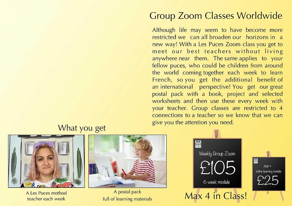 LP Zoom Group web .jpg