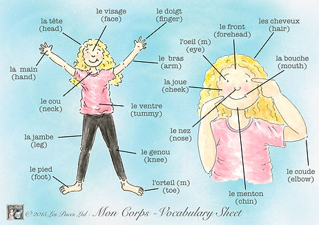 French vocab sheet of body parts, my body in French, French vocabulary sheet for my body, body parts in French, Les Puces vocabulary sheet for my body in French