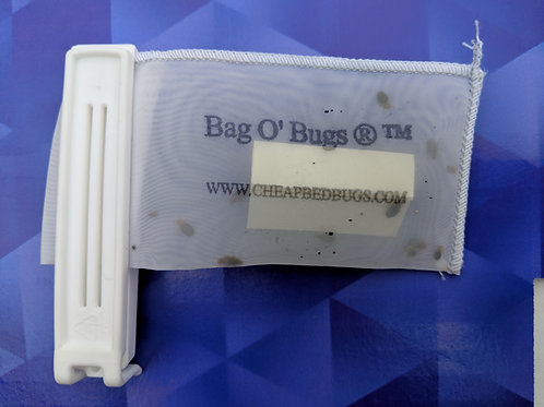 Bag O' Bugs pouch with 25 Bed Bugs