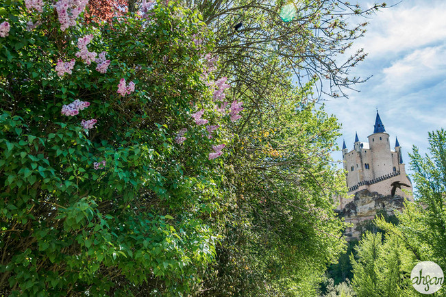 Alcázar de Segovia, study I